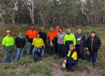 Upper Dingo Swamp Internship Project at Lithgow NSW